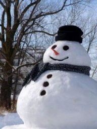Frosty11161