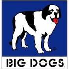 bigdogs1982