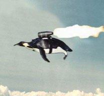 penguinBOMB