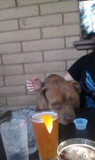 hophound