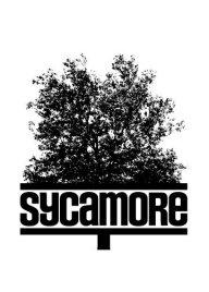Sycamore_Bar