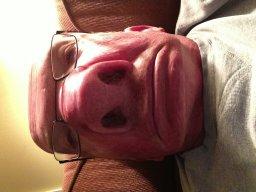 nose4beer