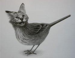 catbirdofdoom