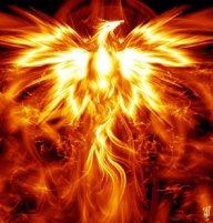 cyber_phoenix