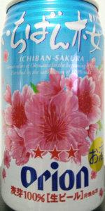 オリオン いちばん桜 Orion Ichiban Sakura