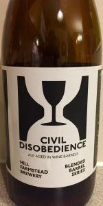 Civil Disobedience #11