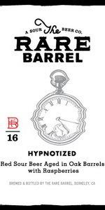 Hypnotized (Echo Series)