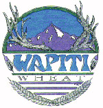 Wapiti Wheat