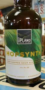 Hopsynth Dry-Hopped Sour Ale