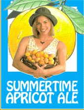 Heartland Brewery Summertime Apricot Ale