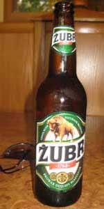 Zubr Bison