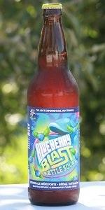 Blueberry Blast Kettle Sour