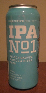Collective Project: IPA No. 1
