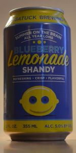 Blueberry Lemonade Shandy
