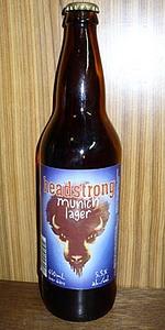 Headstrong Munich Lager