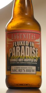 Lagunitas / Short's - Fluxed In Paradise