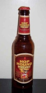 Michelob Hop Hound Amber Wheat