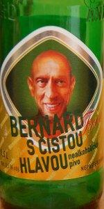 Bernard S &#269&#59;istou Hlavou