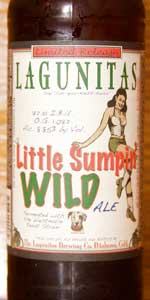 A Little Sumpin' Wild