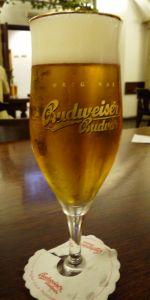 Budweiser Budvar Kroužkovaný Ležák