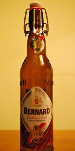 Bernard Jantarový Ležák 12°