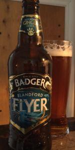 Blandford Flyer