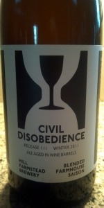 Civil Disobedience #3