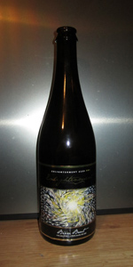 Enlightenment Brut (Bière De Champagne)