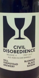 Civil Disobedience #4