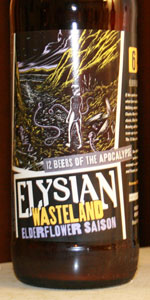 Wasteland Elderflower Saison