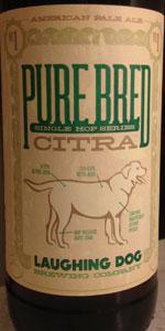 Pure Bred: Citra APA