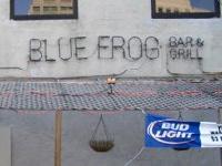 Blue Frog Grog & Grill