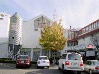 Dockside Restaurant & Brewing Co.
