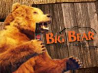 Big Bear Wine & Liquor