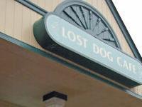 Lost Dog Cafe - North Arlington