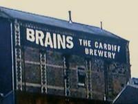 SA Brain & Co.